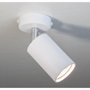 ImperiumLight 591145.01.01 Accent Накладной точечный светильник, спот, цвет белый GU10, MR 16